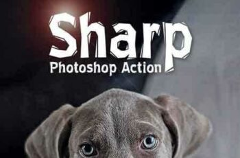 1809153 Sharp HDR Photoshop Action 17781133 3