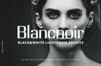 1809281 Blancnoir Lightroom Presets 3477098 4