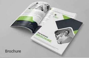 1810017 Bifold Brochure 2795672 2