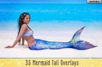 1810037 Mermaid Tail Overlays 3474203 4