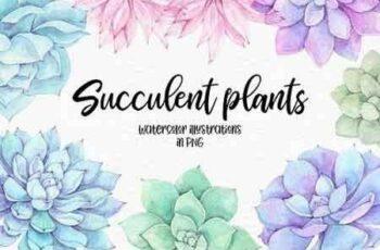 1810225 Succulent plants Watercolor set 2196092 2
