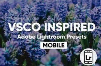 1811061 Lightroom CC Mobile VSCO Presets 2870757 6