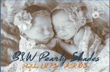 1811256 B&W Pearly Shades Profiles LR7.3 ACR 2563145 6