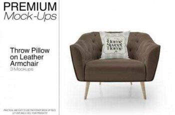 1811269 Throw Pillow on Leather Armchair Set 3482284 8
