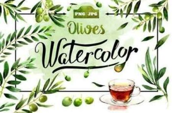 1811285 Olives watercolor PNG clipart 1466479 2