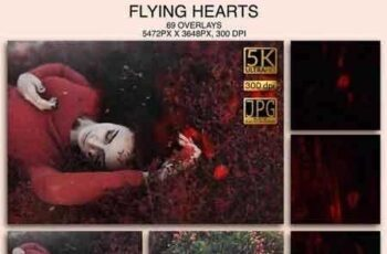 1812033 FlyingHearts 000182 4