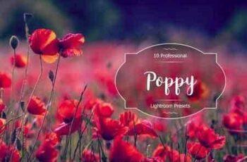 1812034 Poppy Lr Presets 2937265 3