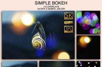 1812070 Simple Bokeh 000197 7