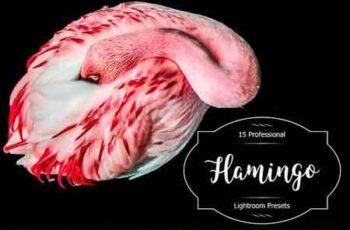 1812072 Flamingo Lr Presets 2941375 2