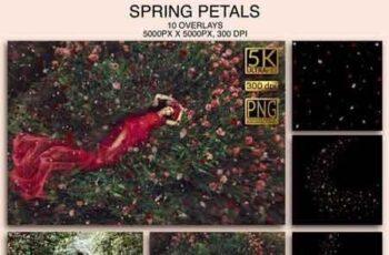 1812079 Spring Petals 000199 5