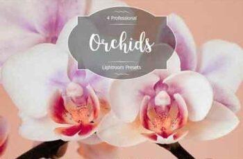 1812108 Orchids Lr Presets 2942880 3