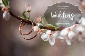 1812118 Wedding Lr Presets 2943778 3