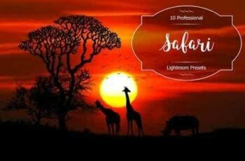 1812156 Safari Lr Presets 2952472 2