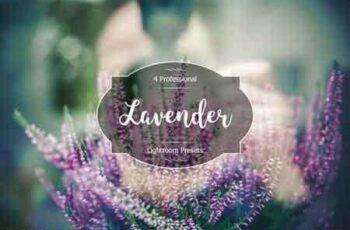 1812178 Lavender Lr Presets 3488971 4