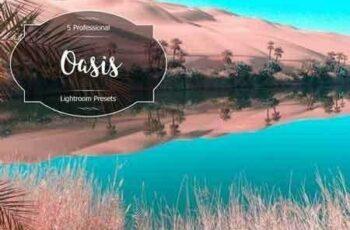 1812182 Oasis Lr Presets 2957045 13