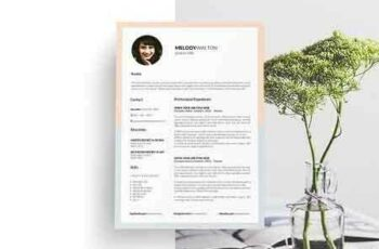 1812244 Resume Template CV Template 5 Page 2708932 3