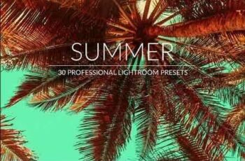 1812257 Summer Lr Presets 2967184 5