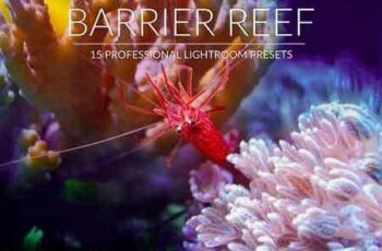 1812290 Barrier Reef Lr Presets 2967871 5