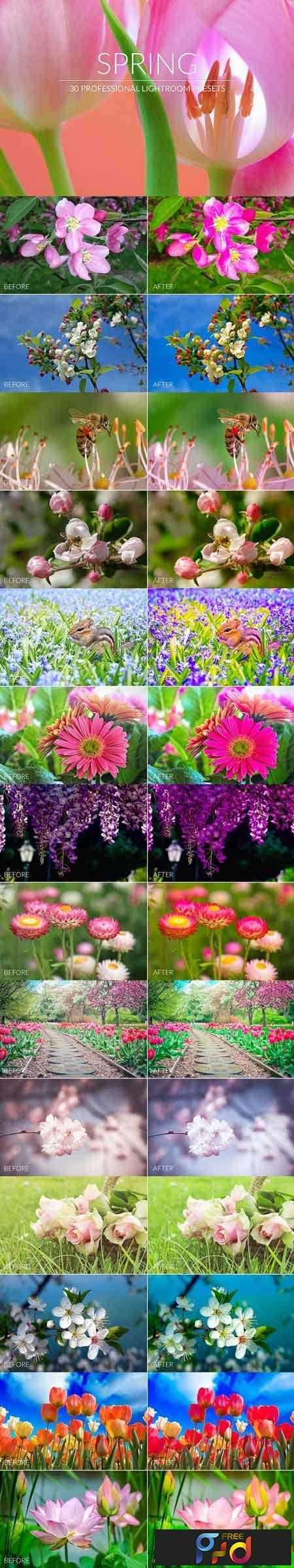 1812302 Spring Lr Presets 2966663 1