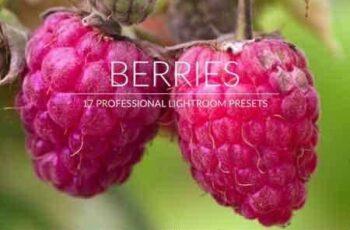 1812349 Berries Lr Presets 2987765 4