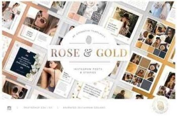 ROSE & GOLD Animated Instagram Pack 2606735 7