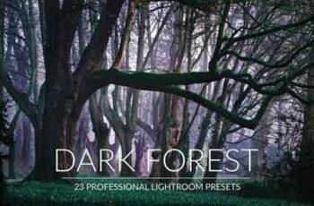 Dark Forest Lr Presets 143731 3