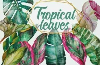 Tropical Greenery, Tropical Leaves 3485998 3