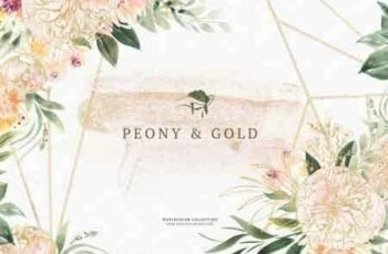 Watercolor Peony & Gold 3485989 6