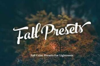 Fall Presets 2018 - Lightroom Preset 2994739 3