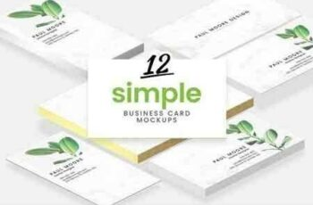 12 Simple Business Card Mockups 2008033 5