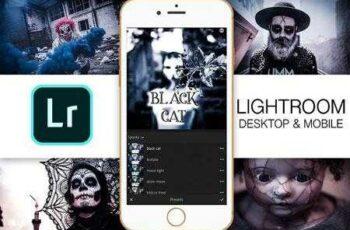 Lightroom Mobile - Black Cat 2939808 5
