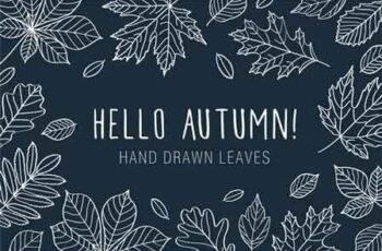 Hand Drawn Leaves of Different Trees 574775 5