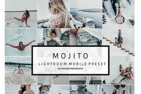 Mobile Lightroom Preset Mojito 2962196 - FreePSDvn