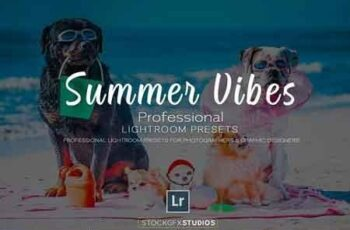 Summer Vibes Pro Lightroom Template 3053696 8