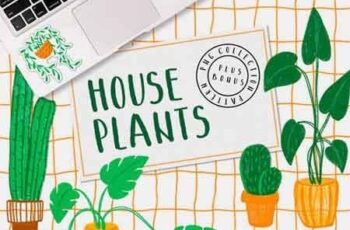 HOUSEPLANTS – PNG & Patterns Pack 2916669 2
