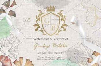 Ginkgo Biloba watercolor and vector 3096850 7