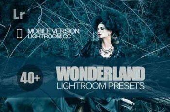 40+ Wonderland Lightroom Mobile bundle 3504100 3
