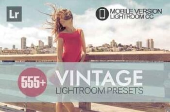 555+ Vintage Lightroom Mobile bundle 3504094 6