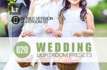 620+ Wedding Lightroom Mobile bundle 3504096 4