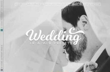 Wedding Lr and ACR Presets 3507141 4