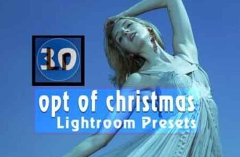 Opt of Christmas Lightroom Presets 3506749 6