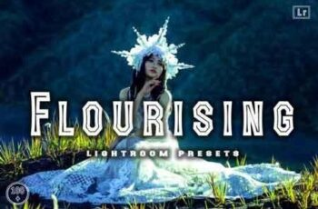 Flourising Lightroom Presets 3509541 3