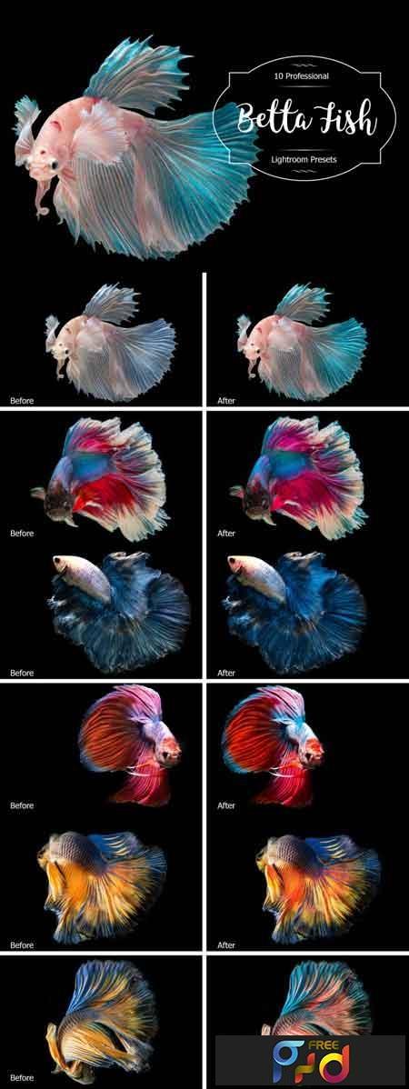 Betta Fish Lr Presets 3488221 1
