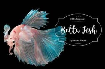 Betta Fish Lr Presets 3488221 7