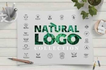 Minimal Leaves Logo Collection 3156105 4