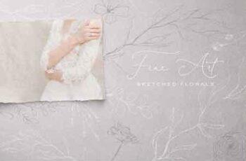 Fine Art Sketched Florals 3156472 5