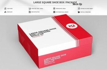 Large Square Shoe Box Package Mock 2998824 4