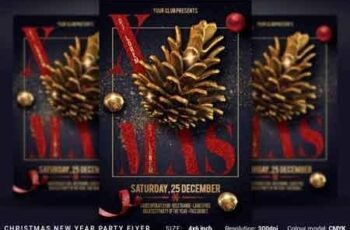 Christmas New Year Party Flyer 3506880 3