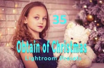 Obtain of Christmas Lightroom Presets 3512967 4