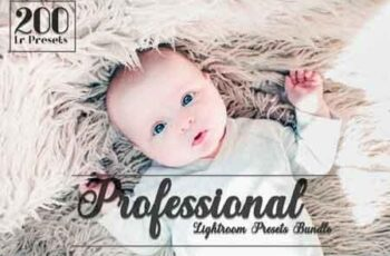 Professional Lightroom Presets Bundle 3512622 3